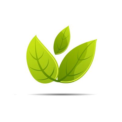 Energie bois