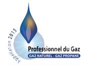 Professionnel de Gaz